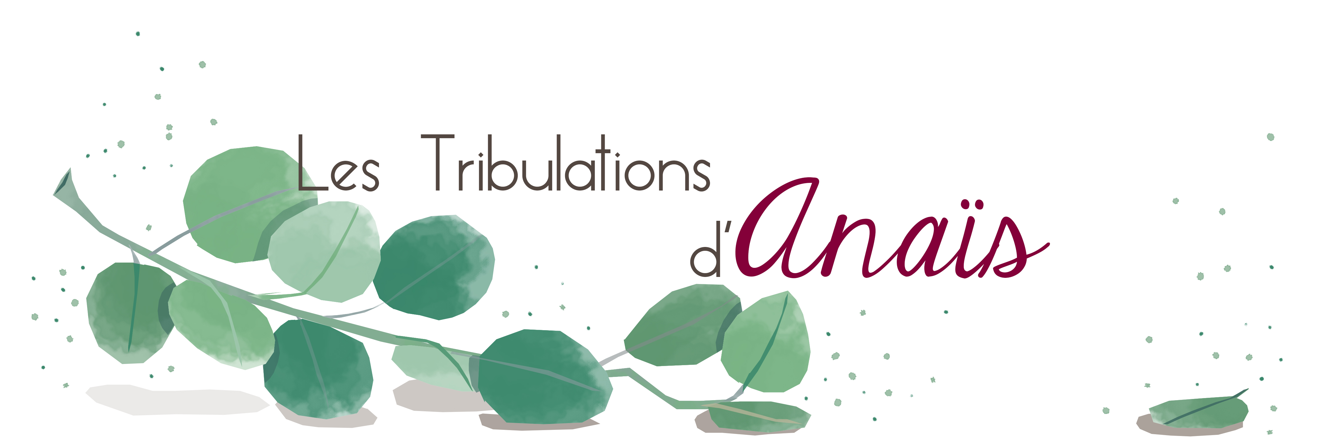 Tribulations d'Anaïs