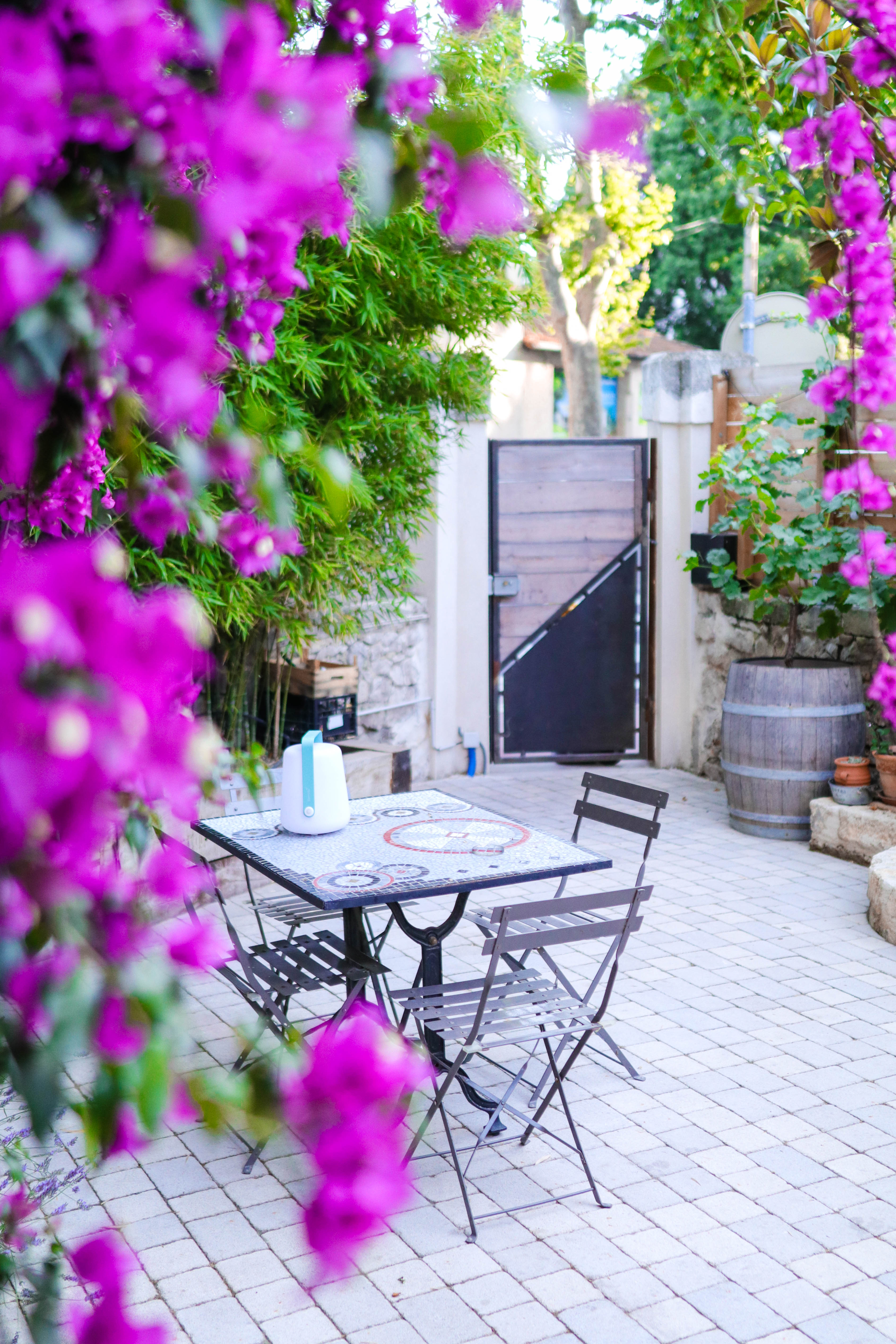 Jardinerie Pas Cher Toulouse bienvenue dans mon jardin - tribulations d'anaïs